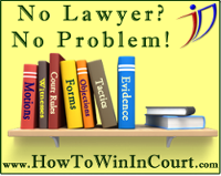No Lawyer? No problem. How to win in court.